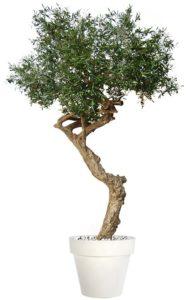 Umělý strom Olive Nidra