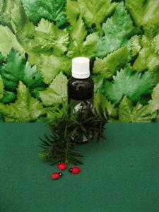 Růže šípková-jedle-habr tinktura z pupenů 50 ml
