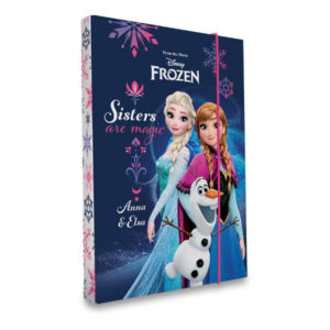Box na sešity A5 – Frozen