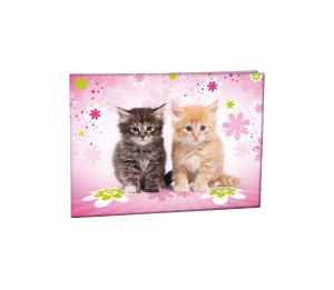 Desky na číslice Cats 2015