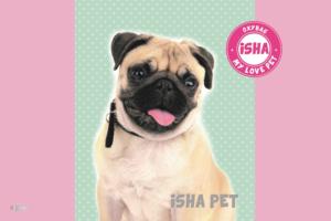 Podložka na stůl Karton P+P 60 x 40cm – ISHA – My love pet