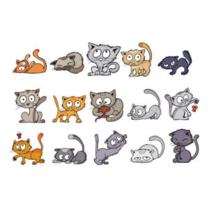 StampoKids, Koťata
