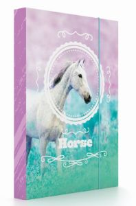 Školní box na sešity A5 Karton P+P –  Kůň romantic