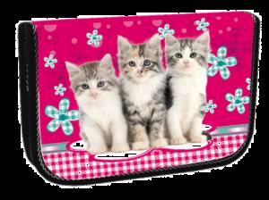 Školní penál jednopatrový Cats