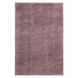 Moderní Kusový koberec Emilia 250 prách fialový