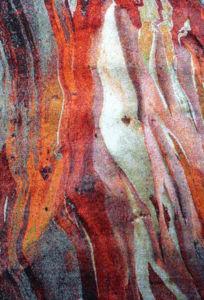 Moderní kusový koberec Rust vícebarevný 21304-910