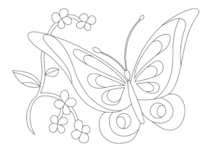Šablona Motýlek