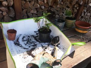 Podložka k přesazování rostlin