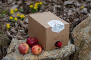 Pasterizovaný jablečný mošt 5l bag-in-box